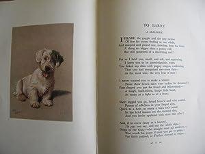 A Dozen Dogs or So - GREAT CECIL ALDIN CLASSIC: Patrick Chalmers