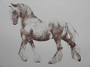WAR HORSE - A Print Inspired By: Michael Morpurgo -