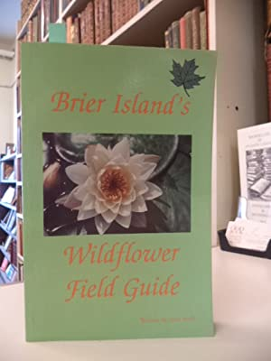 Brier Island's Wildflower Field Guide
