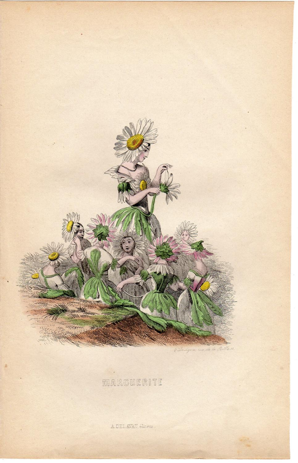 Antique Print-FLOWERS PERSONIFIED-DAISY-MARGUERITE-Grandville-1852 Very Good