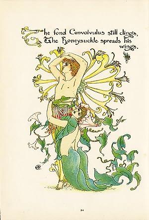 Antique Print-HONEYSUCKLE-LONICERA-FLOWER-FLORA'S FEAST-ART DECO-Crane-1889