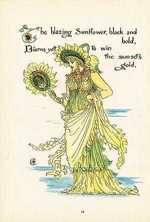 ANTIQUE BOTANICAL PRINT-LITHOGRAPH-SUNFLOWER-FLORA'S FEAST-ART DECO-Crane-1889