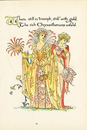 Antique Print-CHRYSANTHEMUM-CHRYSANT-FLOWER-ART DECO-FLORA'S FEAST-Crane-1889
