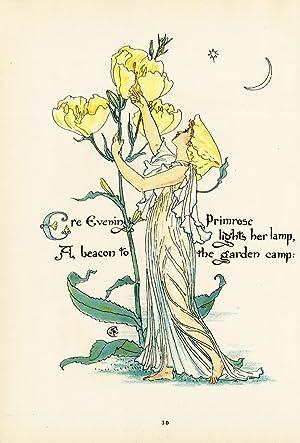 Antique Print-EVENING PRIMROSE-FLOWER-FLORA'S FEAST-ART DECO-Crane-1889