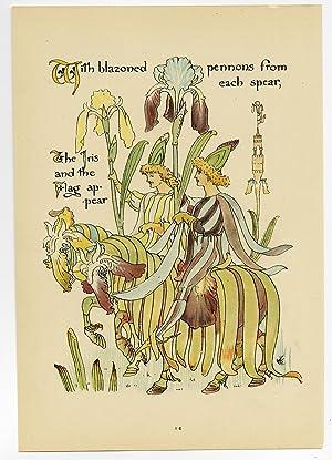 Antique Print-IRIS-IRIDACEAE-FLOWER-FLORA'S FEAST-ART DECO-Crane-1889