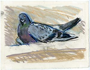 Antique Drawing-BIRD-PIGEON-DOVE-Overhaus-1972