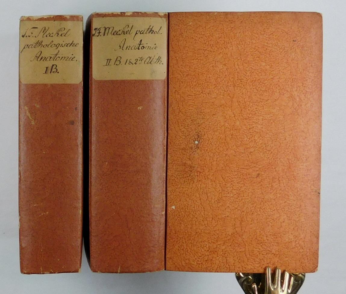 handbuch der pathologischen anatomie - ZVAB