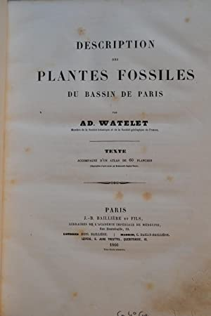 Description des plantes fossiles du bassin de Paris.: WATELET, Adolphe;