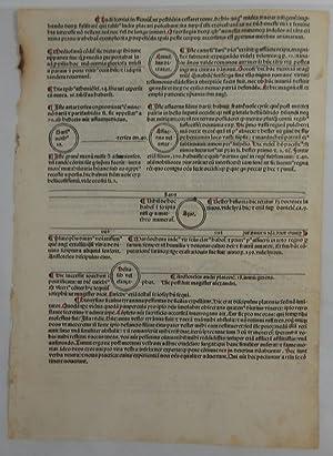 Fasciculus Temporum: Early Printed Leaf)