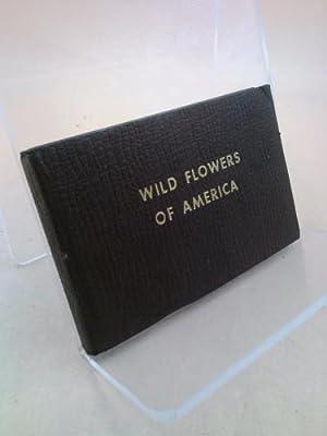 Wild Flowers of America.: Jane Harvey