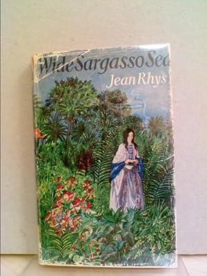 Wide Sargasso Sea (Penguin Clothbound Classics): Rhys, Jean