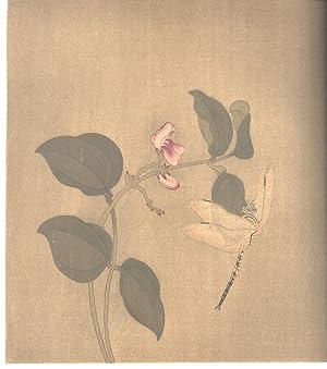 Kokka, Volume 14, Number 157]