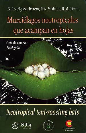 Murciélagos Neotropicales Que Acampan En Hojas: Guía De Campo / Neotropical ...