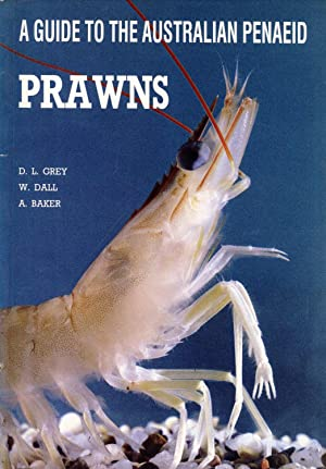 A Guide to the Australian Penaeid Prawns: Grey, D.L.; Dall, W. & Baker, A.