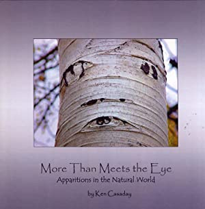 More Than Meets the Eye: Apparitions in the Natural World: Casaday, Ken