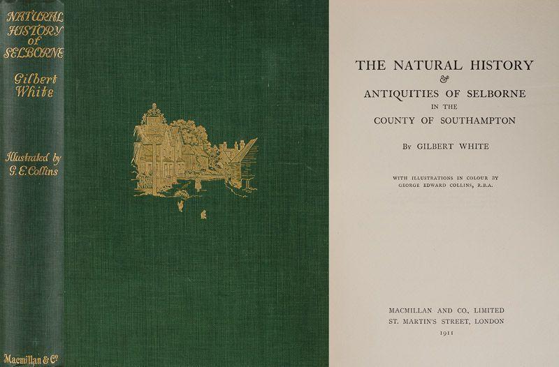 Alt Nordamerika Illustriert Landkarte Brockhaus ca 1863
