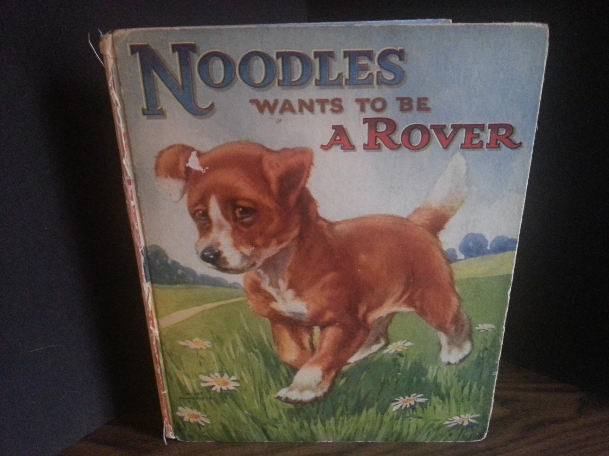 Noodles Wants To Be A Rover - Some Further