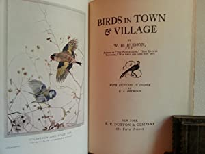 Birds in Town & Village: Hudson, W. H.