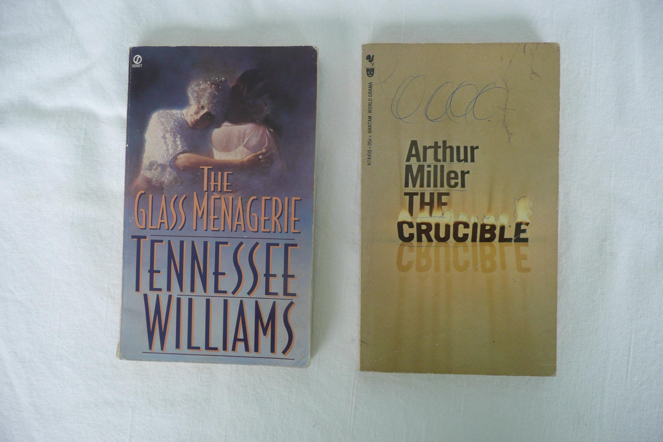 the battle between good and evil in the novel the crucible by arthur miller But in arthur miller's edgy the crucible brilliantly explores the threshold between individual guilt and mass hysteria, personal spite and collective evil.