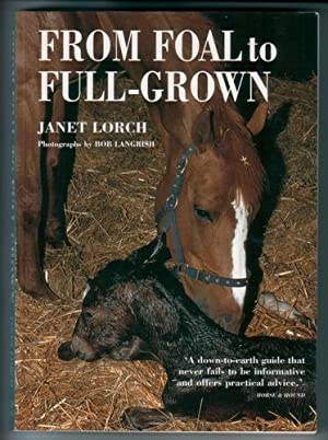 From Foal to Full-Grown