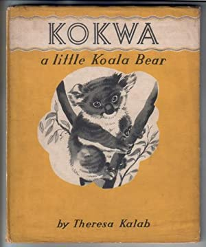 Kokwa a little Koala Bear
