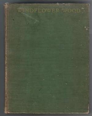 Windflower Wood: Klickmann, F.