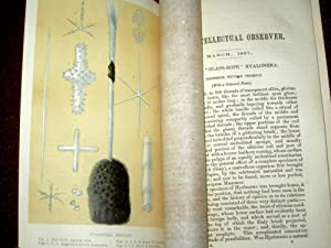 The Intellectual Observer. March 1867. Review of Natural History, Microscopic Research, and ...