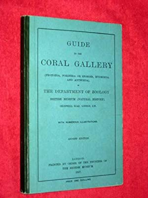 Guide to the Coral Gallery (Protozoa, Porifera or Sponges, Hydrozoa, and Anthozoa), in the ...
