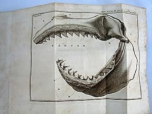Premiere Suite des Mémoires de Mathématique et de Physique, 1749 tires des registres ...