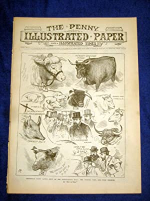 The Penny Illustrated Paper and Illustrated Times. No 1541 of 13 Dec 1890. SMITHFIELD CLUB CATTLE ...