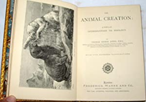 The Animal Creation, A Popular Introduction to Zoology, with 500 illustrations: Jones, Thomas Rymer