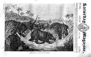 The Saturday Magazine No 225, CHARCOAL,manufacture & use, RHINO ELEPHANT,1836: John William ...