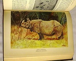 Djurens Värld. Band III DAGGDJUR. En populärvetenskaplig framställning av djurens ...