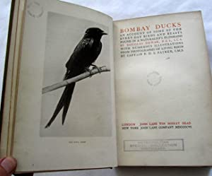 Bombay Ducks: An Account of Some of the Everyday Birds and Beasts Found in a Naturalist's ...