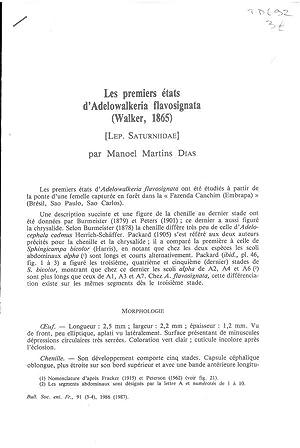 Les premiers états d'Adelowalkeria flavosignata (Walker, 1865): DIAS Manoel Martins