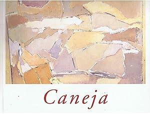 JUAN MANUEL CANEJA: Calvo Serraller. Francisco
