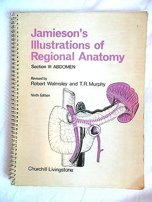 Jamieson's Illustrations of Regional Anatomy Section III: Walmsley, Robert &