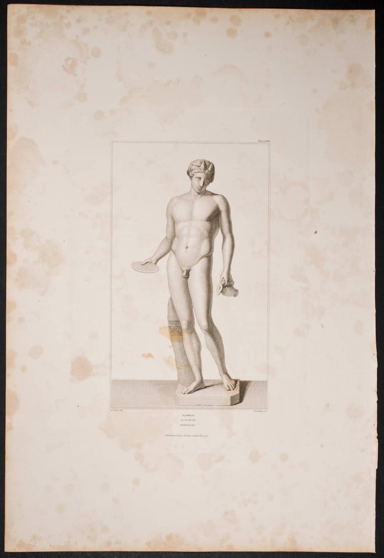 Nude Man Society of Dilettanti Fine