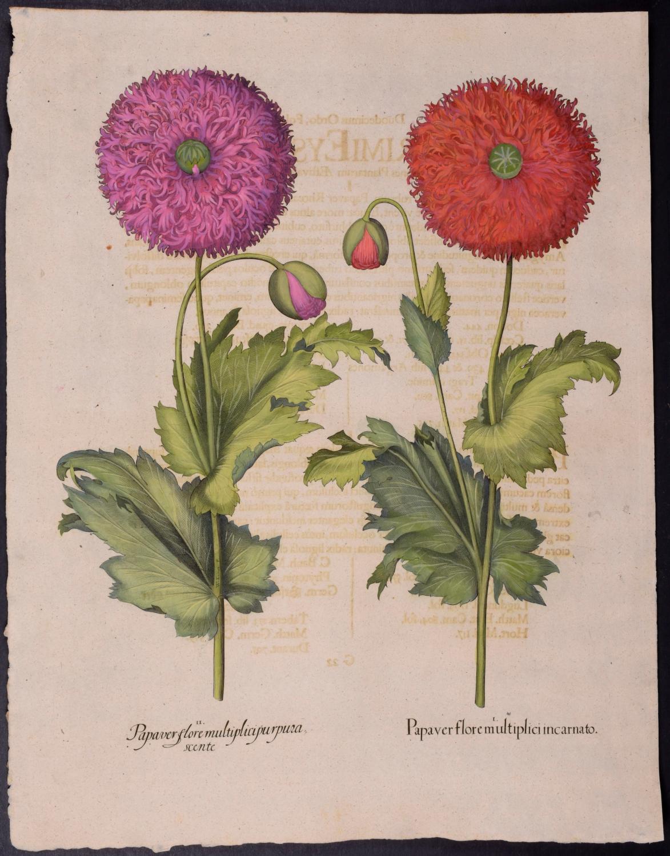 viaLibri ~ Rare Books from 1713 - Page 5