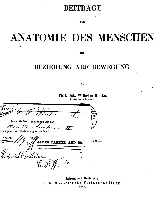 Ziemlich Anatomie Und Menschliche Bewegung Taschenbuch Fotos ...