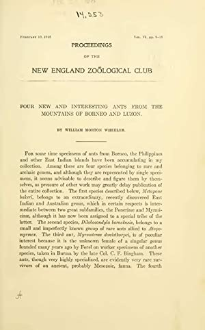 Four new and interesting ants from Borneo: William Morton Wheeler