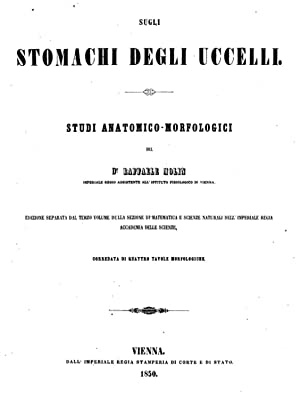 Sugli stomachi degli uccelli studi anatomicomorfologici (1850): Raffaele Molin
