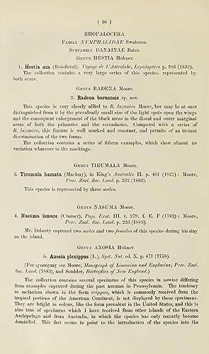 The Lepidoptera of Buru. Part I. Rhopalocera: W J Holland