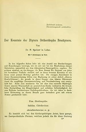 Zur Kenntnis der Orthorrhapha Brachycera (1920) (Volume: