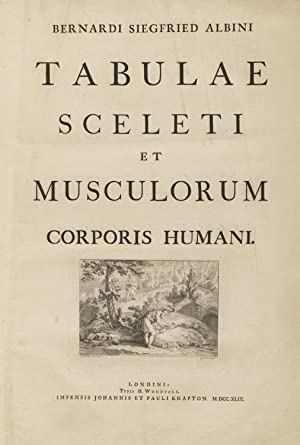Bernardi Siegfried Albini Tabulae sceleti et musculorum: Albinus, Bernhard Siegfried,