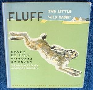 Fluff the little wild rabbit.: Lida (Faucher).