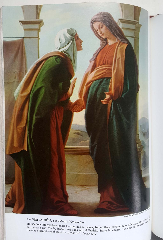 La Sagrada Biblia: Translated from the Latin