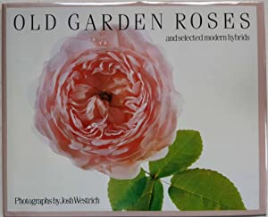 Old Garden Roses and Selected Modern Hybrids
