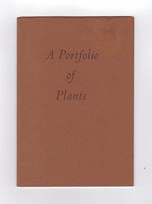 Announcing: A Portfolio of Plants: Kumler, Kipton; Hilton