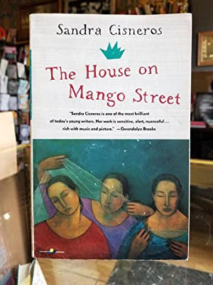 the house on mango street novel